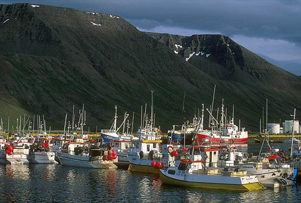 Fishing boats, the Westfjords, Island