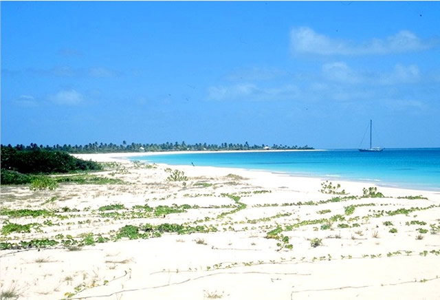 Strand auf Barbuda - Beach in Barbuda, Antigua & Barbuda